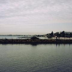 老港口用戶圖片