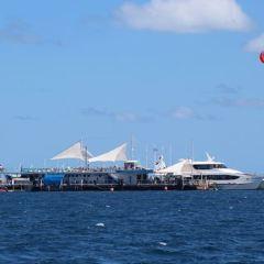 Seabob Jet Australia User Photo