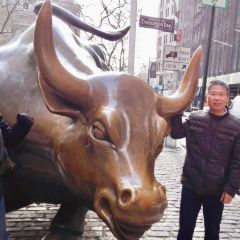 Wall Street User Photo