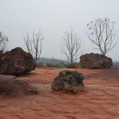 湯山風景區用戶圖片