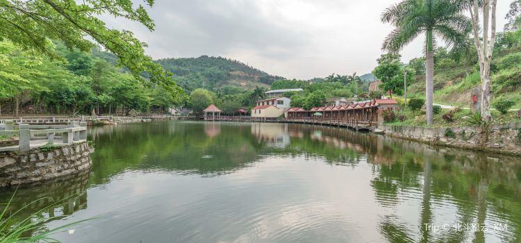 Qinglongzhai Mountain Villa1