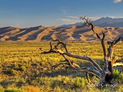 大沙丘國家公園
