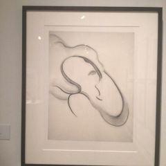 康奈爾美術館用戶圖片