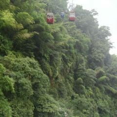 Cableway in the Shunan Bamboo Sea User Photo