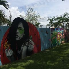 Wynwood Walls User Photo