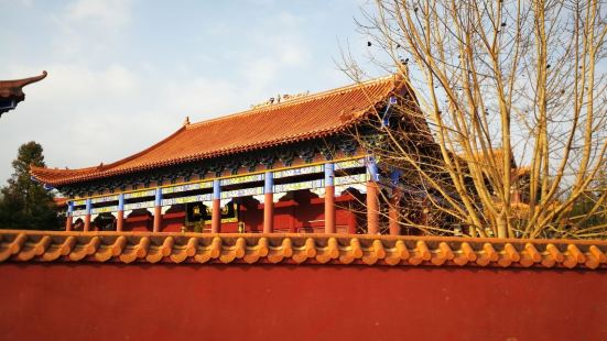 Guangdong Zijin Lantang Longfengsi