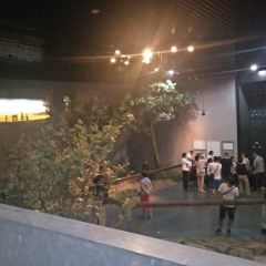저우커우뎬 북경인 유적 박물관 여행 사진