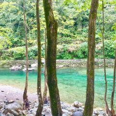 江口國家濕地公園用戶圖片
