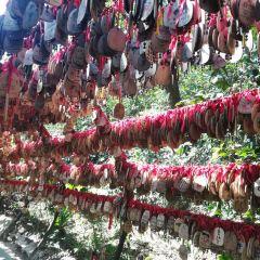 Moxing Summit Baiyun Mountain User Photo