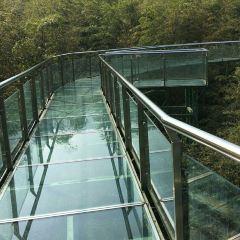 竹尖玻璃棧道用戶圖片