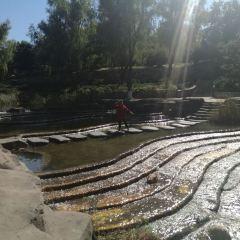 칭룽후 공원 여행 사진