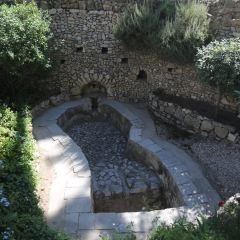 花園墓用戶圖片