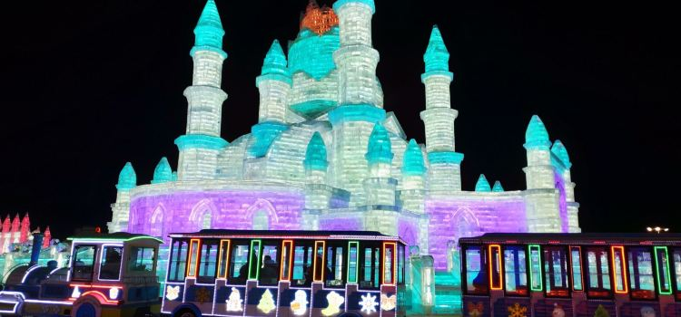 Harbin Ice and Snow World Indoor Ice and Snow Theme Park2