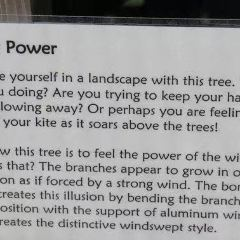 美國植物園用戶圖片