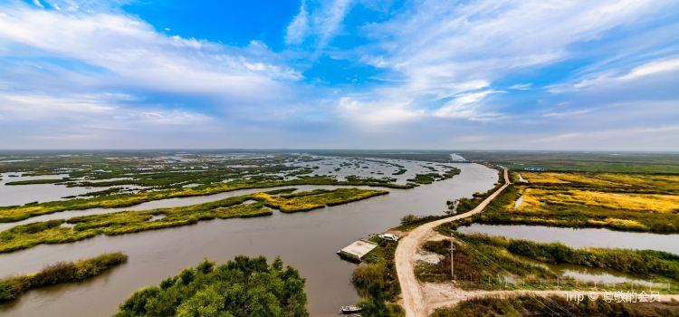 雁窩島濕地生態旅遊區