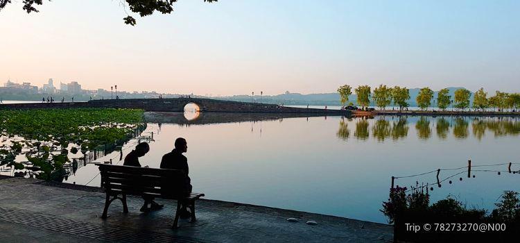 西湖公園3