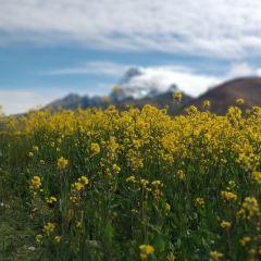 帕裡草原用戶圖片