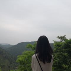 Gaofeng Forest Park User Photo