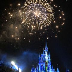 Magic Kingdom Park User Photo