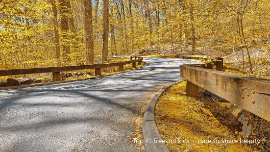 Richwoods Drive