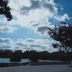 Yushun Park User Photo