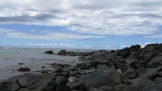 Sea Hawaii
