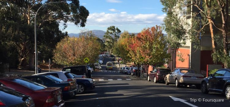 University of Tasmania3