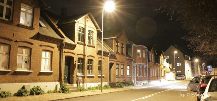 Odense City Hall1