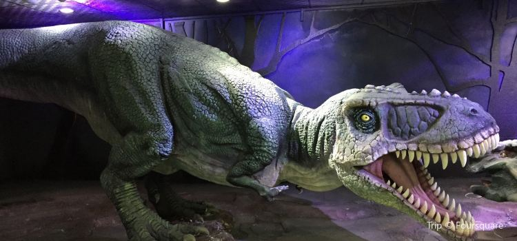 The Central Museum of Mongolian Dinosaurs1