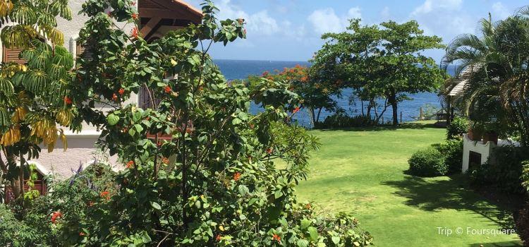 Smugglers Cove Resort & Spa1