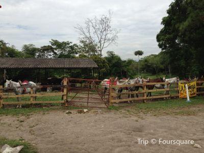 Campo Ecologico Gramalote
