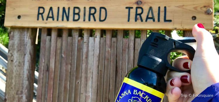 Ketchikan Rainbird Trail3