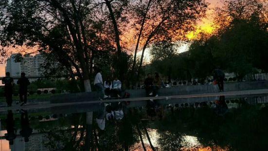 新疆農業大學