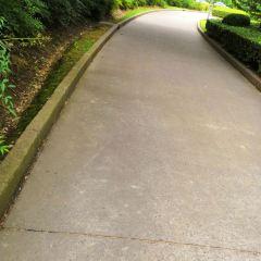 Reisen Park User Photo