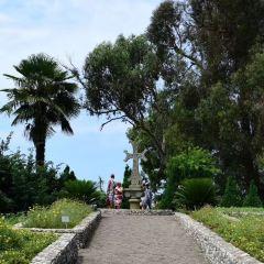 Batumi Botanical Gardens用戶圖片