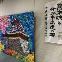 쿠마모토시청 여행 사진