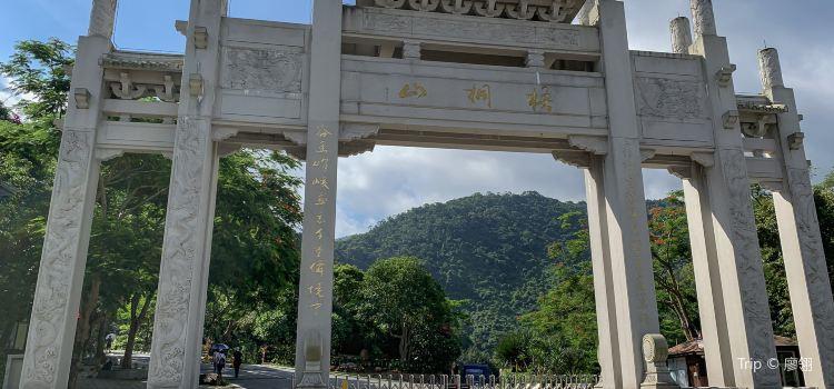 Wutong Mountain3