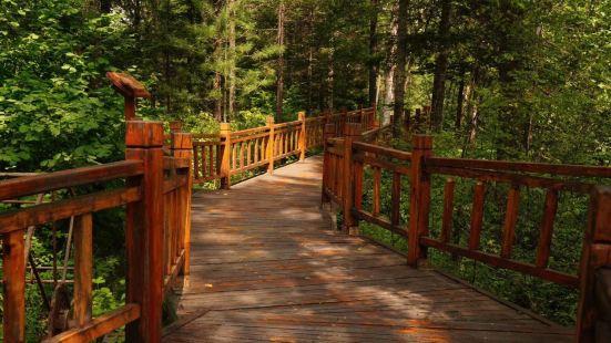 湯旺河國家森林公園
