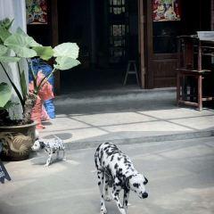 芹川村用戶圖片