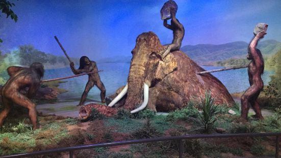 Nihewan Museum