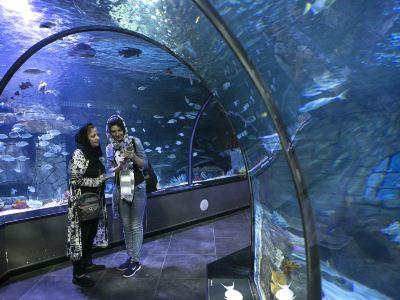 基爾水族館