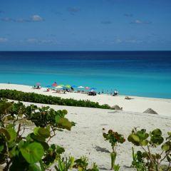 Playa Gaviota Azul User Photo