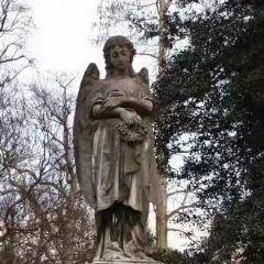 荷里活永恆公墓用戶圖片