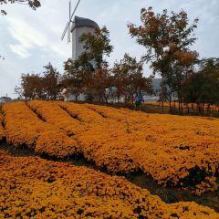 禾泉農莊用戶圖片
