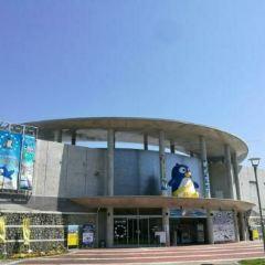 長崎企鵝水族館用戶圖片