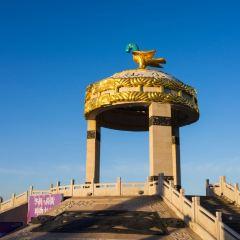 鄂爾多斯青銅文化廣場用戶圖片