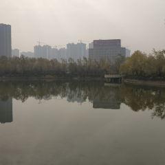 古城公園用戶圖片