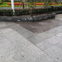 棲霞山植物園用戶圖片