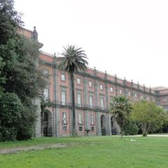 Bosco di Capodimonte User Photo