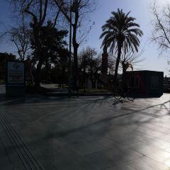 Adana Merkez Park User Photo